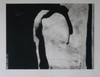 エッチングと アクチアント Bird - Abstract 1