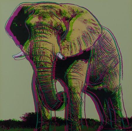 シルクスクリーン Warhol - African Elephant