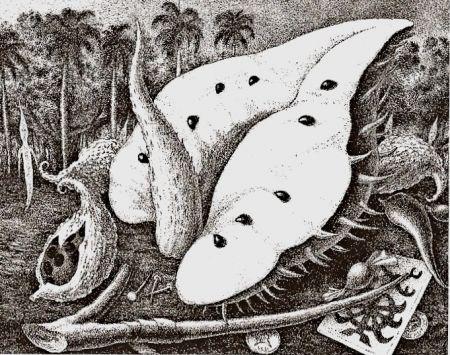 彫版 Alejandro - Aguamor de Candiafuertes II