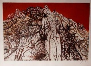 エッチングと アクチアント Prassinos - Alpine rouge