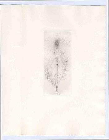 挿絵入り本 Bellmer - Bataille (Georges). Madame Edwarda.