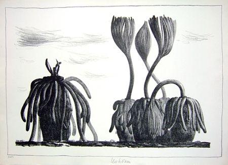 リトグラフ Lionni - Betula tormens
