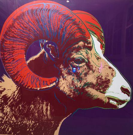 シルクスクリーン Warhol - Bighorn Ram Tp (Fs Ii.302)
