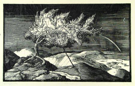木版 Schönleber - Blütenbaum im Donautal (Flowering tree in the Danube valley)