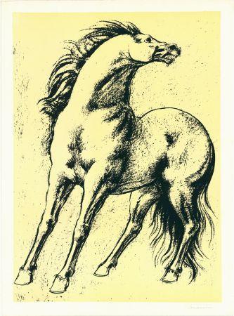リトグラフ Messina - Cavallo