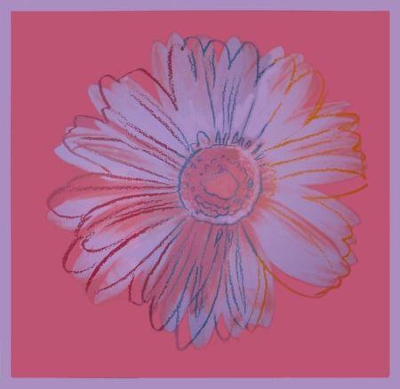 シルクスクリーン Warhol - Daisy, ca