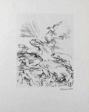 ポイントーセッシュ Kokoschka - Die Frösche / The Frogs