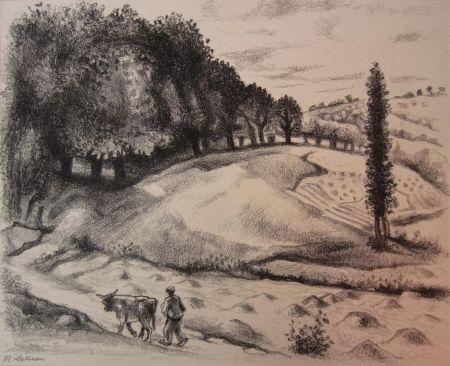 彫版 Lotiron - Dix estampes originales