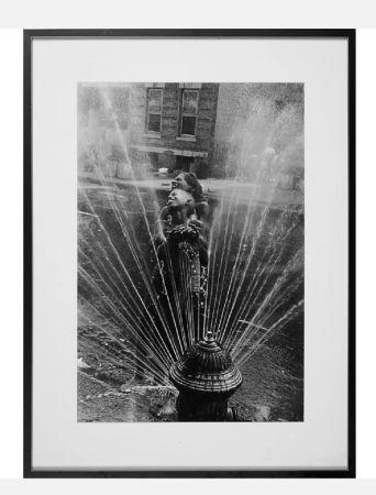 多数の Freed  - Fire Hydrant, Harlem