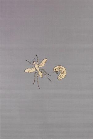 多数の Fabre - Fly