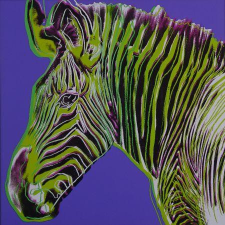 シルクスクリーン Warhol - Grevy's zebra