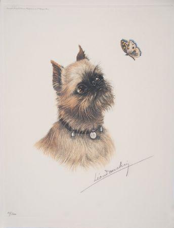 エッチング Danchin - Griffon Bruxellois et papillon - Brussel Griffon and butterfly
