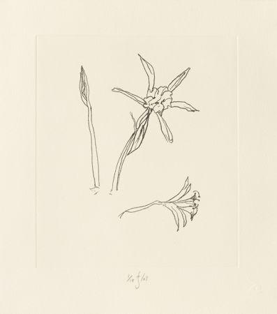 彫版 Flanagan - Ibiza Meadow Flower