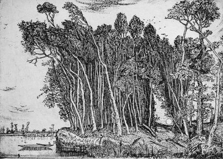 エッチング Bozzetti - Il bosco in riva al fiume: sera