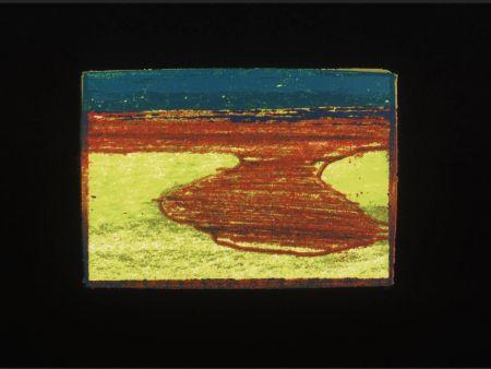 シルクスクリーン Hodgkin - Indian Views Suite – Plate L