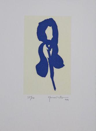 アクチアント Hernandez Pijuan - Iris Blau Iv / Blue Iris Iv