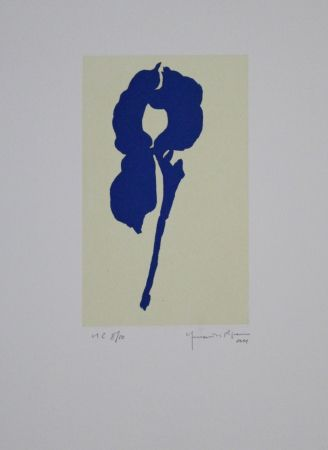 アクチアント Hernandez Pijuan - Iris Blau Viii / Blue Iris Viii