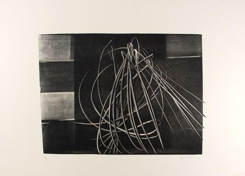 リトグラフ Hartung - L-4-1976