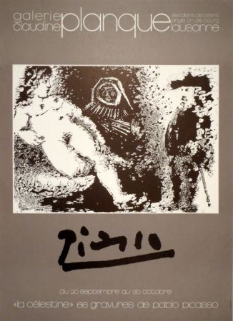 掲示 Picasso -