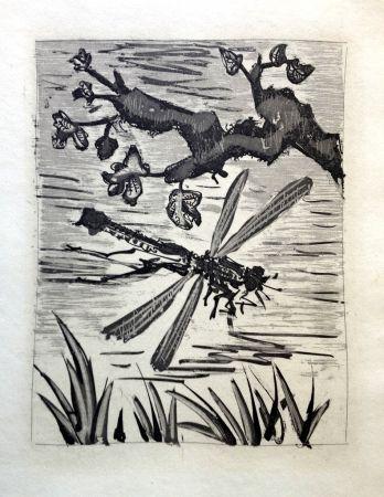 エッチングと アクチアント Picasso - LA LIBELLULE