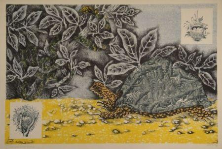 リトグラフ Lurcat - La Tortue