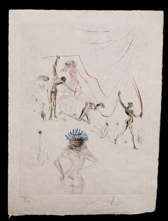 彫版 Dali - La Venus aux Fourrures The Negresses