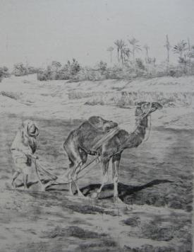 リトグラフ Lunois - Laboureur du Kef