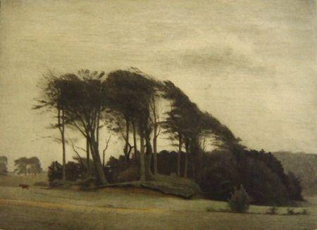 メゾチント彫法 Ilsted - Landscape at Fredensborg