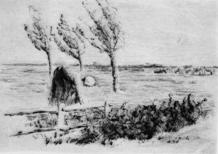 ポイントーセッシュ Liebermann - Landschaft mit Zaun