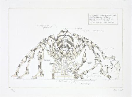 リトグラフ Delarozière - L'araignée géante