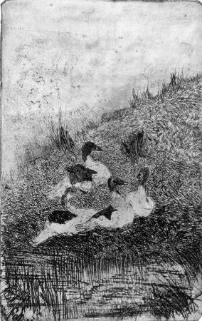 エッチング Fattori - Le anatre