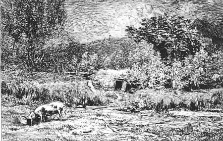エッチング Daubigny - Le cochon dans un verger