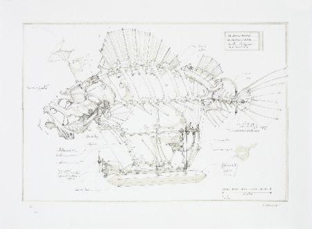 リトグラフ Delarozière - Le poisson pirate