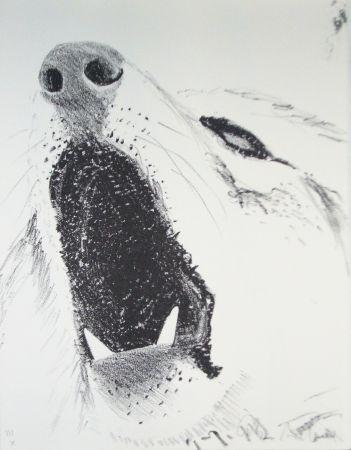 挿絵入り本 Aillaud - L'Encyclopédie de tous les animaux - Tome III