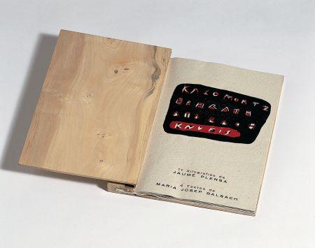 挿絵入り本 Plensa - Llibre De Fusta