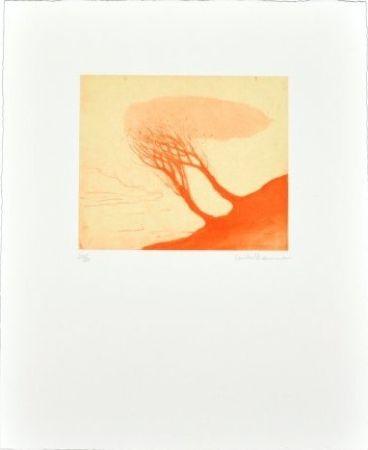 多数の Ikemura - Los árboles rojos