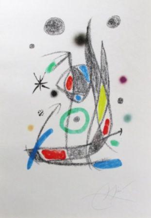 リトグラフ Miró - Maravillas Con Variaciones Acrósticas En El Jardín De Miró - Plate 14