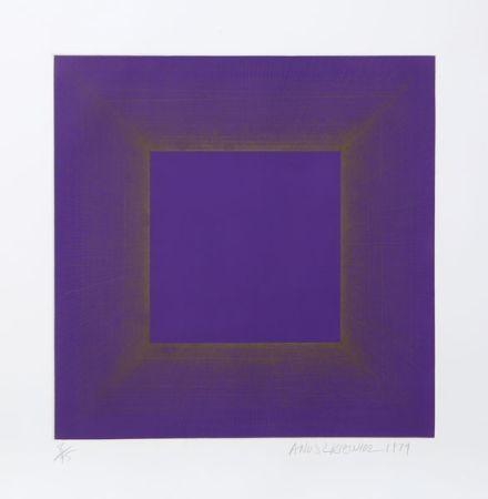 アクチアント Anuszkiewicz - Midnight Suite (Purple with Silver)