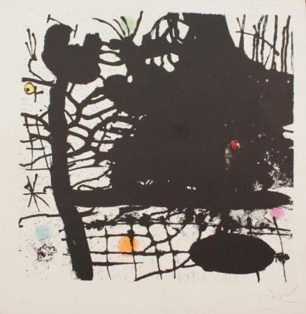 リトグラフ Miró - Nuit Tentaculaire