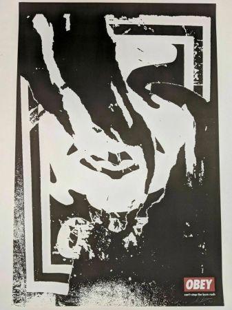 リトグラフ Fairey - Obey (Ripped)