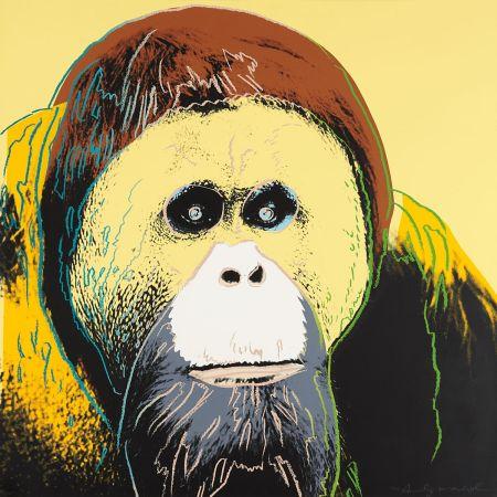 シルクスクリーン Warhol - Orangutan (FS II.299)