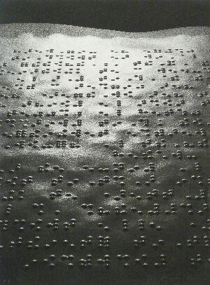 写真 Fontcuberta - Paisatge braille