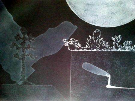 彫版 Argimon - PALETA