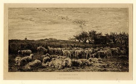 彫版 Daubigny - Parc à moutons:  le matin, in