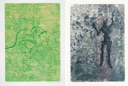 エッチングと アクチアント Ernst - PAROLES PEINTES (1959) 2 GRAVURES ORIGINALES DE MAX ERNST (10 gravures originales de Max Ernst, Jacques Hérold, Wifredo Lam, Sébastian Matta et DorotheaTanning. Poèmes d'Alain Bosquet).