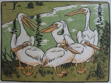 木版 Berthold - Pelikane