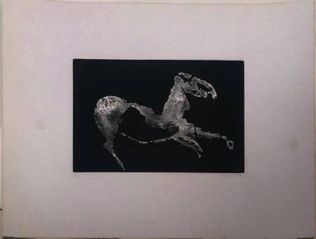 アクチアント Marini - Petit Cheval