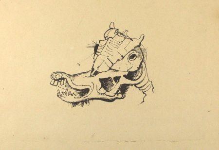 リトグラフ Hofer - Pferdeschädel / Horse Skull