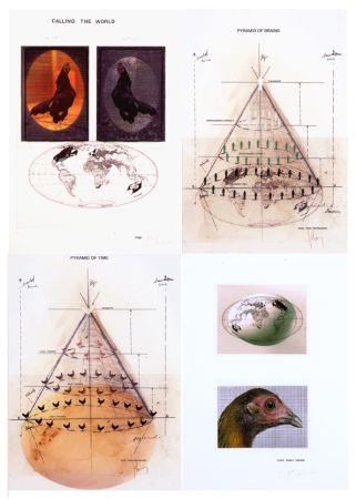多数の Vanmechelen - Piramids