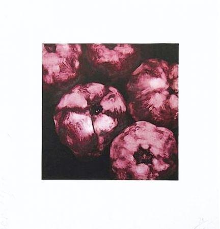 シルクスクリーン Sultan - Pomegranates